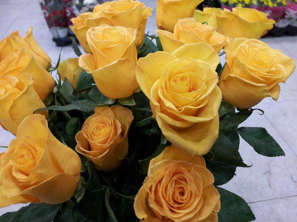 Regalar rosas en Madrid, ramo rosas El Jardín de la Abuela